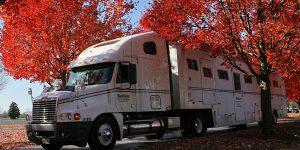 Sallee Horse Transportation
