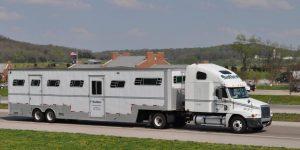 Sallee Horse Vans Horse Transport
